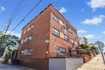 Jersey City Multi Family Home For Sale: 174 Lincoln St