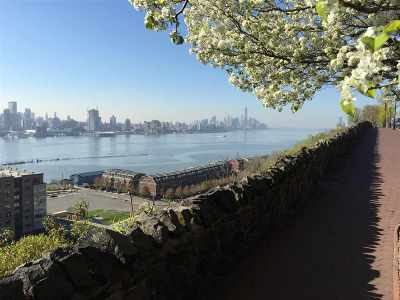 Weehawken Condo/Townhouse For Sale: 35 51st St #A1