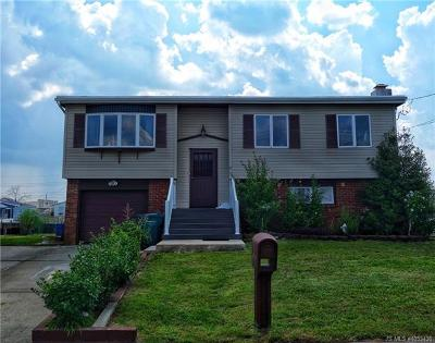 Single Family Home For Sale: 17 Delaware Drive