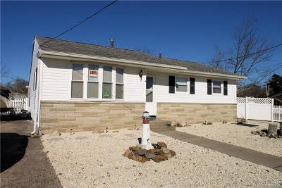 Single Family Home For Sale: 4 Lake Huron Drive