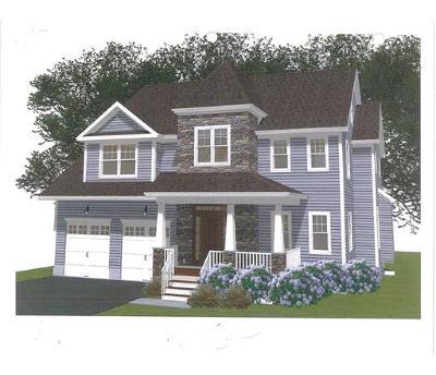 Metuchen Single Family Home For Sale: 300 Grove Avenue