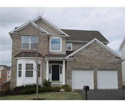 Somerset County Single Family Home For Sale: 33 Willocks Circle