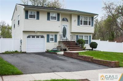 Metuchen Single Family Home For Sale: 23 Westinghouse Avenue