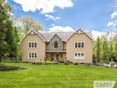 Somerset County Single Family Home For Sale: 304 Zion Road