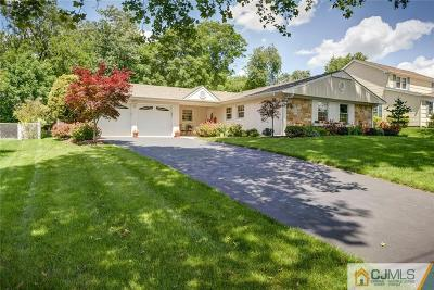 Somerset County Single Family Home For Sale: 25 Indiana Road