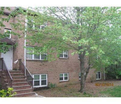 Edison Condo/Townhouse For Sale: 166 College Drive #166