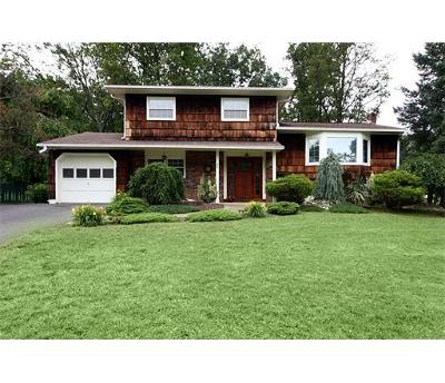 Sayreville Single Family Home For Sale: 48 Fielek Terrace