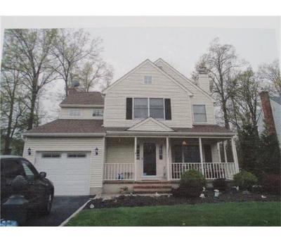 Somerset County Single Family Home For Sale: 11 Hoagland Court