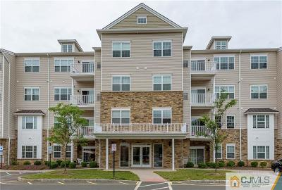 Piscataway Condo/Townhouse For Sale: 446 Tower Boulevard