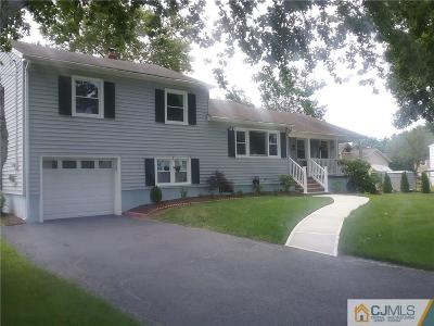 South Plainfield Single Family Home For Sale: 301 May Avenue