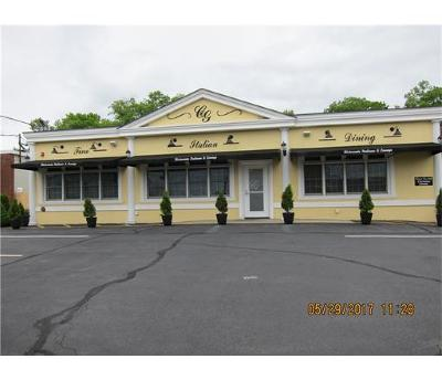 Commercial For Sale: 487 Route 27 Highway