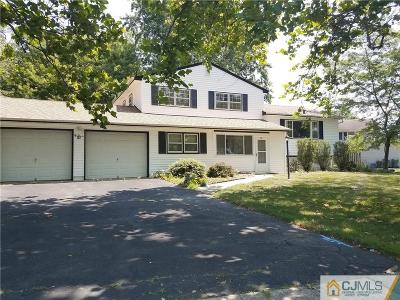 Single Family Home For Sale: 57 Annette Drive