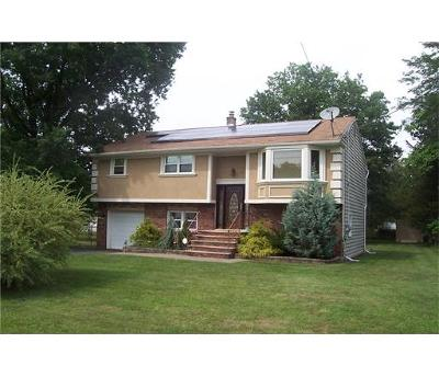 Somerset County Single Family Home For Sale: 141 Farrell Street