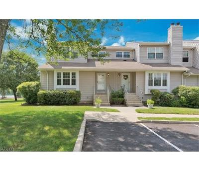 Somerset County Condo/Townhouse For Sale: 182 Driscoll Court