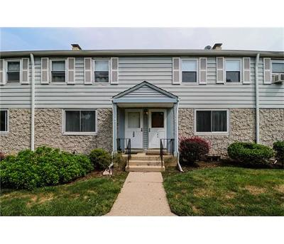Metuchen Condo/Townhouse For Sale: 166 Newman Street