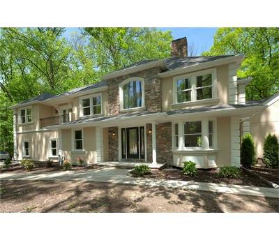 Colonia Single Family Home For Sale: 345 Middlesex Avenue