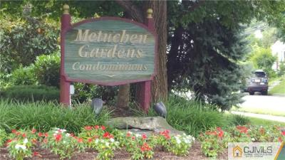 Metuchen Condo/Townhouse For Sale: 50 Prospect Street #8
