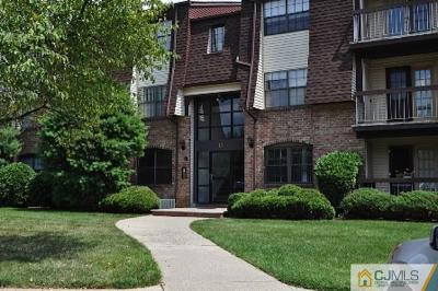 Iselin Condo/Townhouse For Sale: 1311 Green Hollow Drive #1311