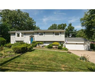 East Brunswick Single Family Home For Sale: 131 Tices Lane