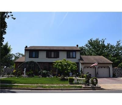 Edison Single Family Home For Sale: 23 Plafsky Drive