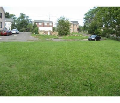 Edison Single Family Home For Sale: 344 Plainfield Avenue