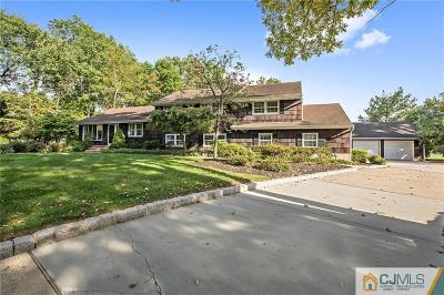 Piscataway Single Family Home For Sale: 101 Haywood Avenue