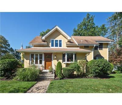 Metuchen Single Family Home For Sale: 47 Eggert Avenue