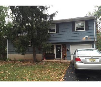 Metuchen Single Family Home For Sale: 11 Rolfe Place