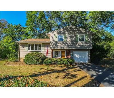 Metuchen Single Family Home For Sale: 15 Rolfe Place