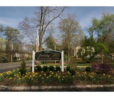 Somerset County Condo/Townhouse For Sale: 126 Woodward Lane