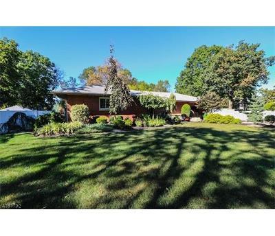 Edison Single Family Home For Sale: 134 Ethel Road