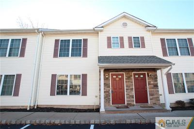 Somerset County Condo/Townhouse For Sale: 2b Henry Street #B