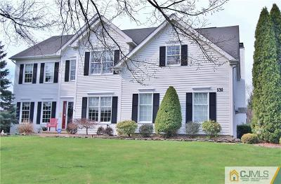 Monmouth County Single Family Home For Sale: 131 Round Hill Drive