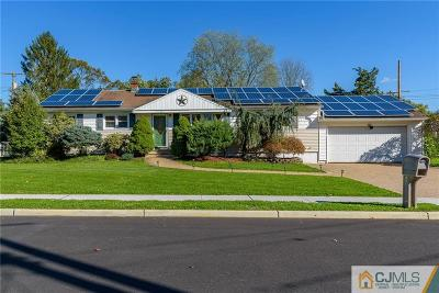 Monmouth County Single Family Home For Sale: 5 Lake Drive