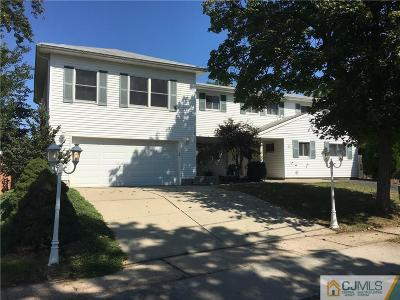 Edison Single Family Home For Sale: 33 Back Drive