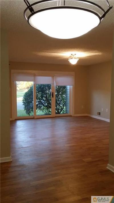 Somerset County Condo/Townhouse For Sale: 43 Crabapple Lane