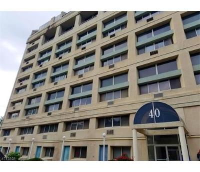 Perth Amboy Condo/Townhouse For Sale: 40 Fayette Street #52