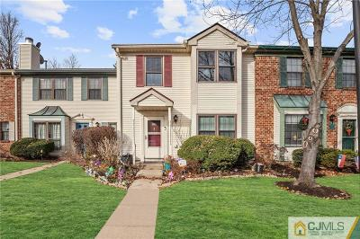 Somerset County Condo/Townhouse For Sale: 15 Tracy Court