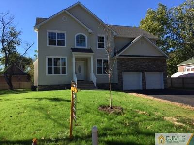 Somerset County Single Family Home For Sale: 432 Hillcrest Avenue