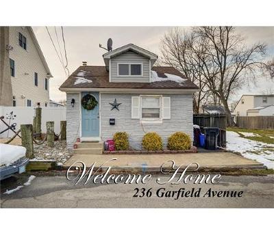 OLD BRIDGE Single Family Home For Sale: 236 Garfield Avenue
