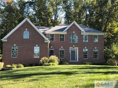 Somerset County Single Family Home For Sale: 43 County Route 518 Road