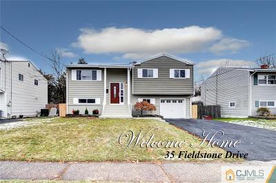 Somerset County Single Family Home For Sale: 35 Fieldstone Drive
