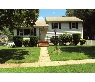 South Plainfield Single Family Home For Sale: 417 Pierce Street