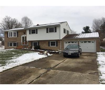 East Brunswick Single Family Home For Sale: 50 Eggers Street