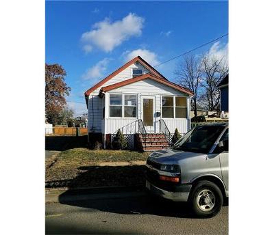 South Plainfield Single Family Home For Sale: 111 Leonard Avenue