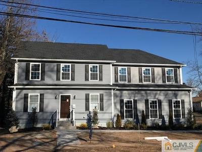 Piscataway Single Family Home For Sale: 295 Stelton Road