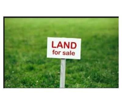 Monroe Single Family Home For Sale: 00 Mounts Mills Road