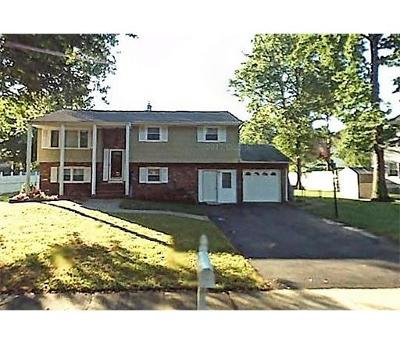 Piscataway Single Family Home For Sale: 262 Davis Avenue