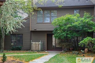 Edison Condo/Townhouse For Sale: 141 Maplewood Court