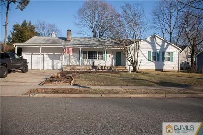 Metuchen Single Family Home For Sale: 36 Summit Avenue